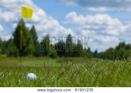 Golf ball grass flag