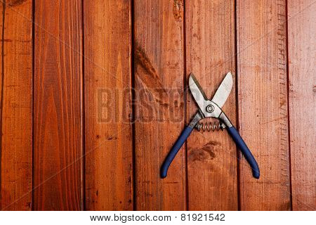 Scissors On Wood Background