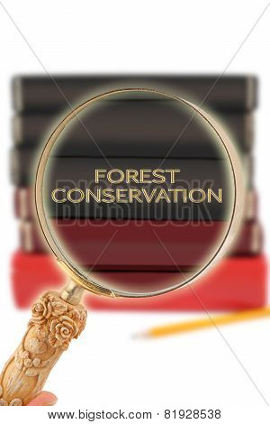 Looking In On Education -  Forest Conservation