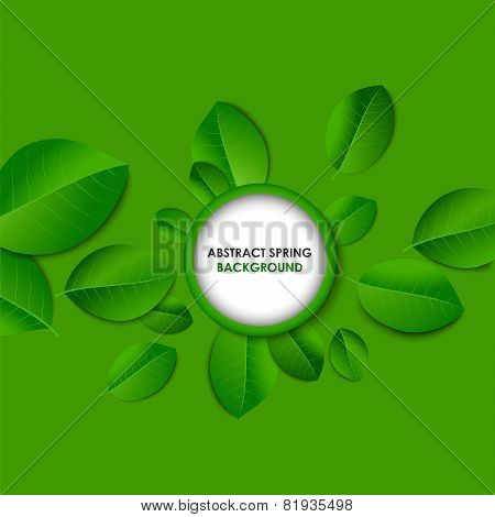 Spring Abstract Background With Green Leaves