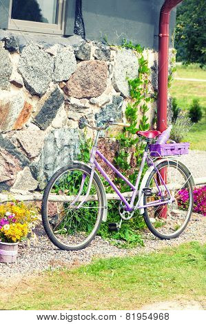 Glamour Purple Lavender Rural Retro Bicycle. Outdoors.