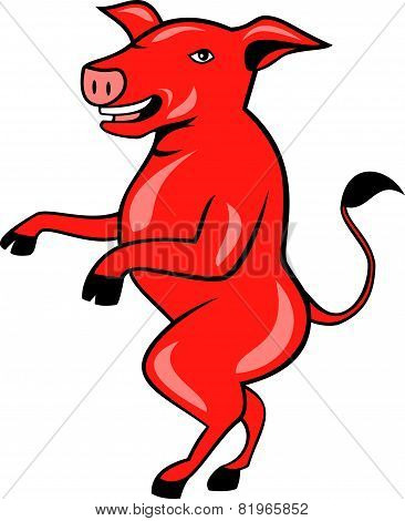 Pig Walking Tall Side Cartoon