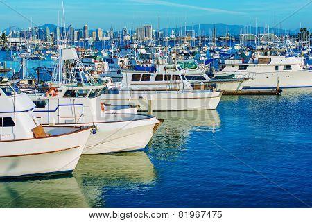 San Diego Marina And Skyline