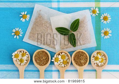 Fresh and dried chamomile flowers and chamomile tea bags