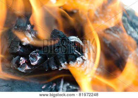 Bright open fire with burning log and ash