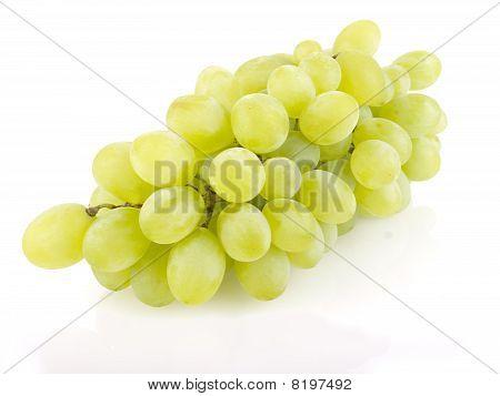 White Vino Separated On White