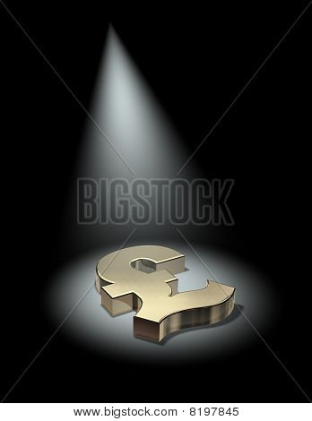Spotlight on the pound