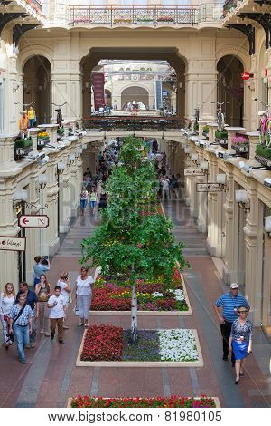 Artificial Trees And Walking People In Gum Store