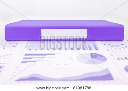 Blank Purple Folder With Graph Summary And Educational Reports
