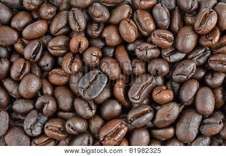 Roasted Coffee Seed For Fresh Coffee, Background