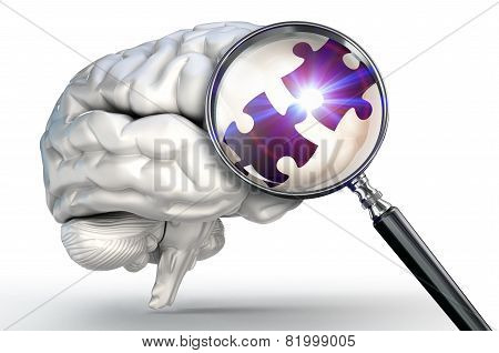 Connection Puzzle Piece On Magnifying Glass And Human Brain
