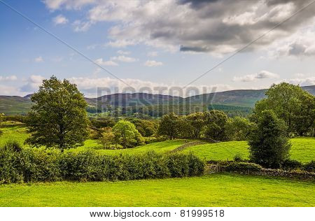 Green countryside landscape in Cumbria