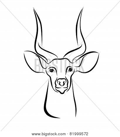 Head Of Kudu Antelope Ink Line Art