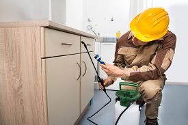 stock photo of pest control  - Pest Control Worker Spraying Pesticides On Wooden Drawer - JPG
