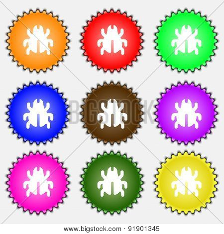 Software Bug, Virus, Disinfection, Beetle  Icon Sign. A Set Of Nine Different Colored Labels. Vector