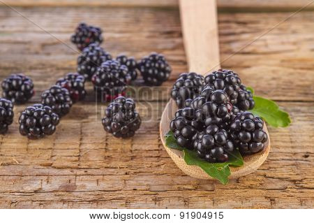 Blackberries in Spoon