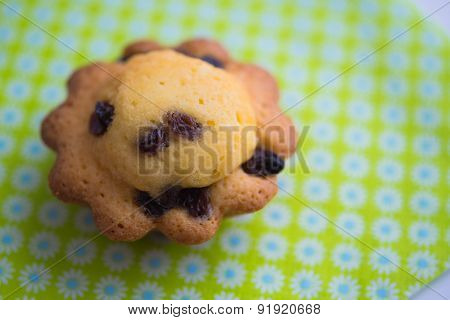 Aerial View Delicious Cupcake With Raisins On Blue Green Background