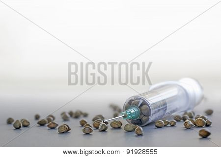 Hemp Seeds In A Syringe