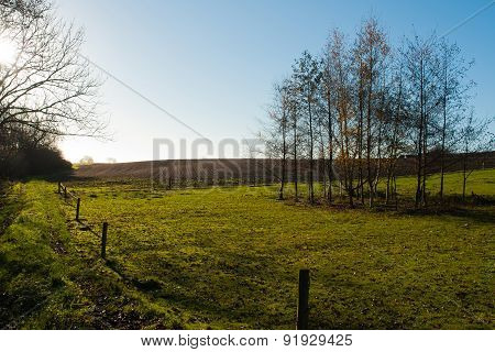 Green Summer Landscape Scenic View Image