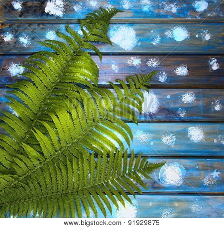 Green Fern Leaves On A Blue Wooden Table, A Picturesque Backdrop