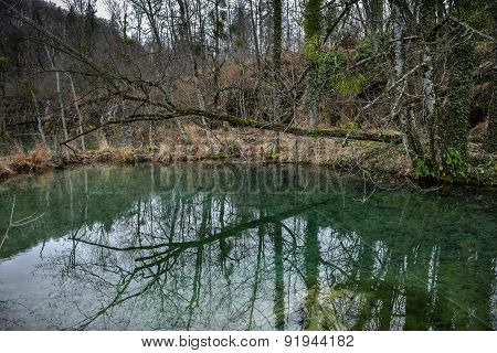 Small Pond at Plitvice lakes national park