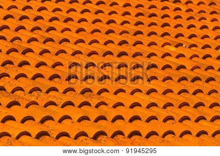 Orange Tiles.