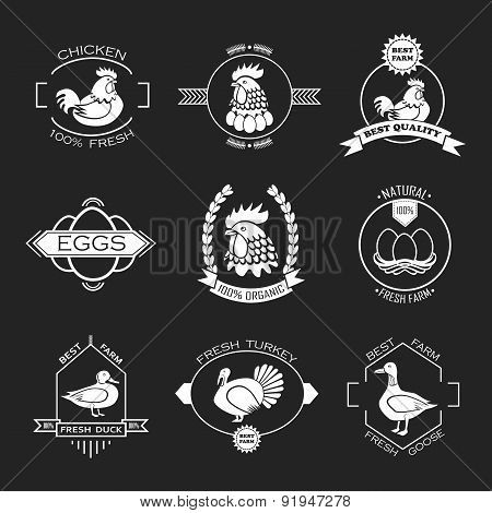 Set Of Poultry Farm Logo, Emblem. Chicken, Turkey, Goose, Duck.