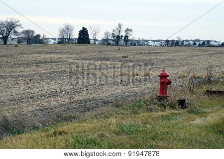 Fire Hydrants in an Agricultural Field