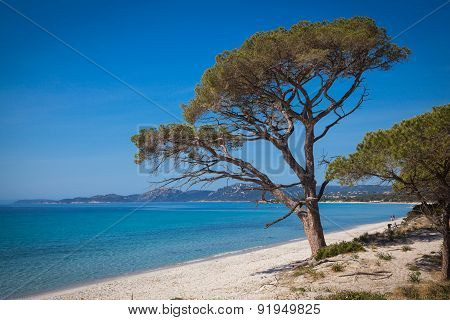 The beach of Palombaggia