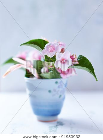 Spring flowers in a ceramic cup
