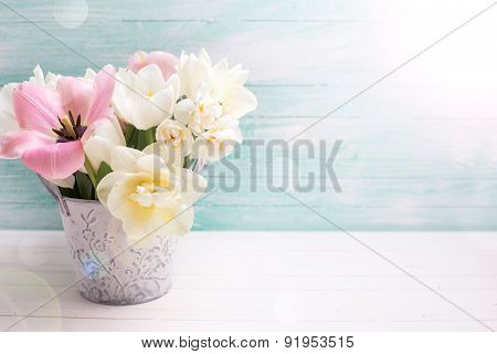 Background With Fresh  Tulip Flowers