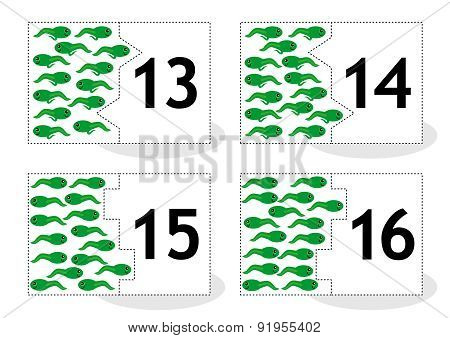 Learn counting puzzle cards, newts and tadpoles, numbers 13-16