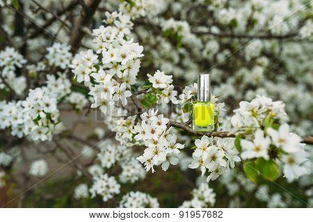 nail polish spring