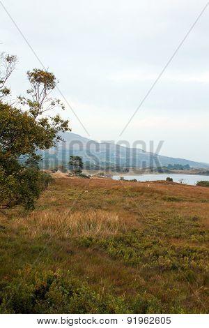 Lough Corrib - North