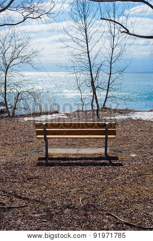 Empty Wood Bench At Lake And Bare Trees In Winter.