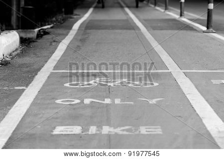Bicycle lane and bicycle sign in public park
