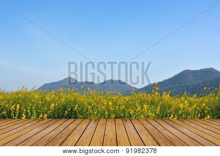 Rapeseed Flower Field With Sky And Wood Floor