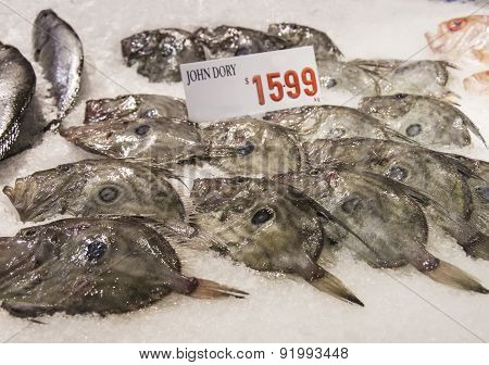 John Dory (zeus Faber)  Fishes
