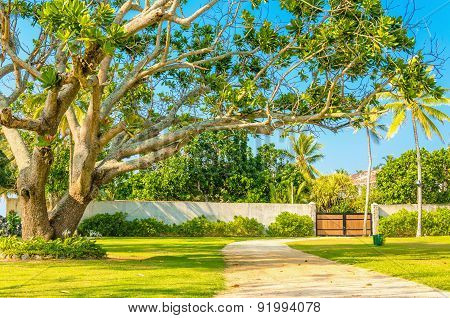 Wooden entrance among exotic trees