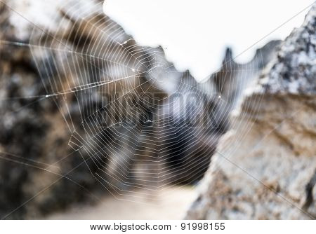 Spiders Web among the rocks