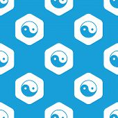 pic of ying yang  - Blue image of ying yang in white hexagon - JPG