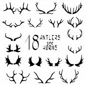 picture of antlered  - Set of 18 deer antlers and horns isolated on white - JPG