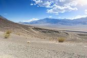 pic of cottonwood  - Fragment of Ubehebe Crater in Death Valley National Park California United States - JPG