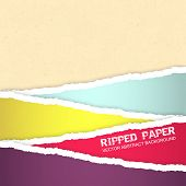 stock photo of ripped  - Ripped paper vector background - JPG