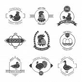 pic of duck  - Set of poultry farm logo emblem - JPG
