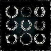 pic of laurel  - Set of laurel wreaths - JPG
