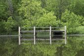pic of dock a pond  - Wooden ffishing pier on the quiet water of a pond - JPG