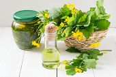 foto of infusion  - Celandine herbs in a basket infusion in the bank and oil for herbal medicine - JPG