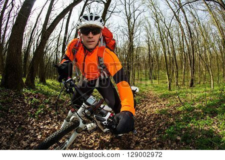 Cyclist Riding the Bike on the Trail in the Beautiful Spring Forest