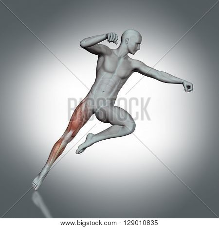 3D render of a medical figure with partial muscle map in jump pose